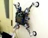 wallclimbing_robot.jpg
